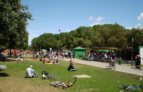 Parque del alamillo Sevilla
